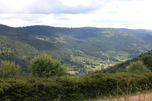 Tourbières et un fossé   Img_9513