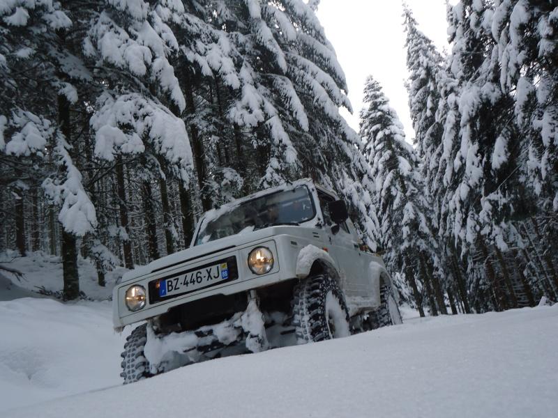 un sam parmis les jeeps  Dsc00711