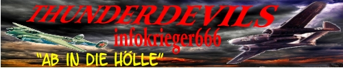 Die 10 Gebote der THUNDERDEVILS Logo1110