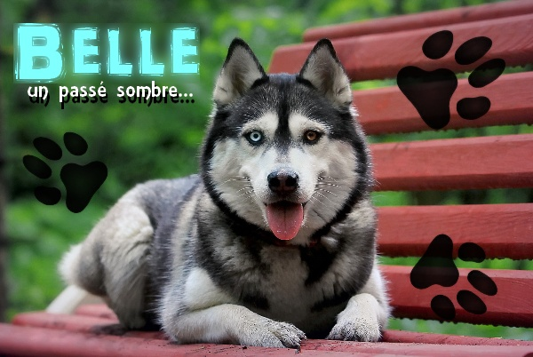 Cadeaux pour Luna de Belle Belle_10