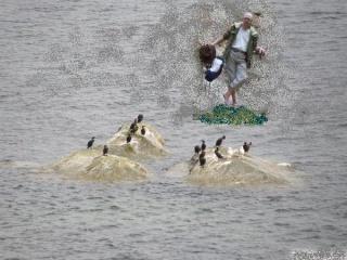 Balade côtière du 23 et 24 juin 2012 à la Trinité sur mer. - Page 6 Rocher12