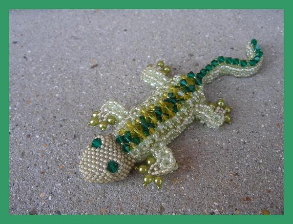 Oskar la salamandre!!!!! P1010032