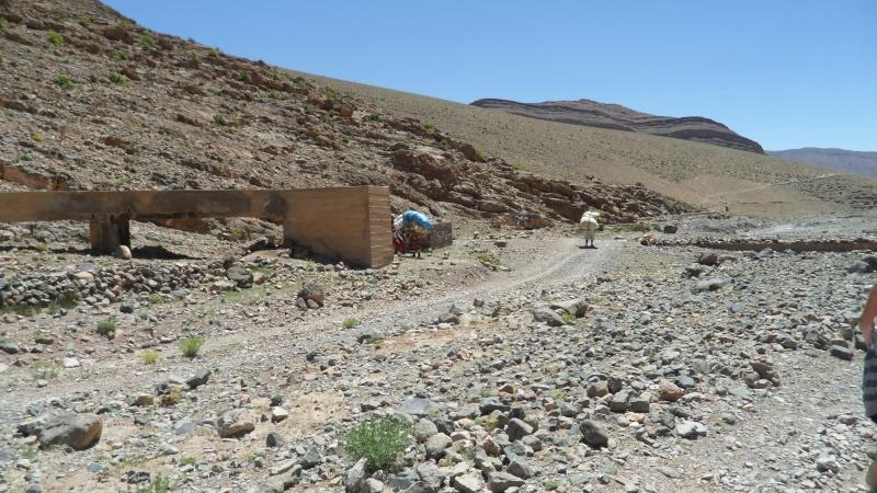 Découverte d'une mine de sel en montagne Atlas_35