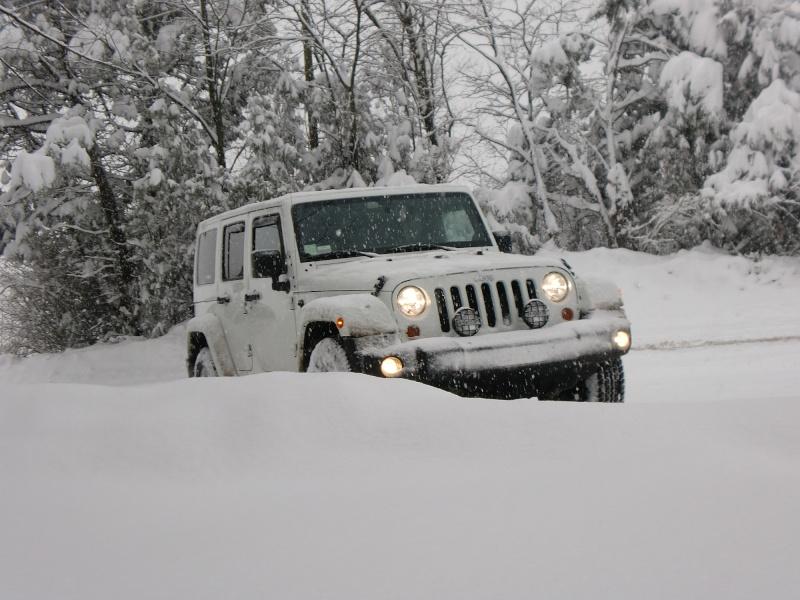 JK...MIMETICO SIBERIANO Atto 2...sempre più neve! Cimg9411