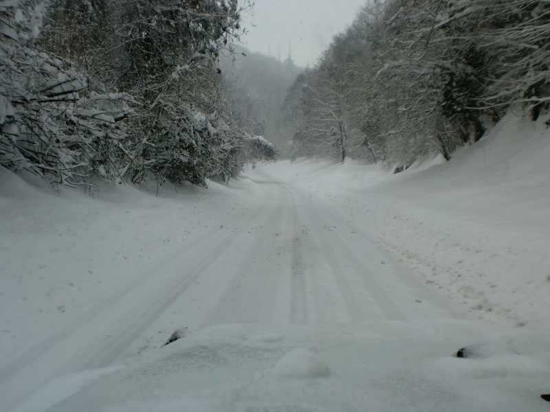 JK...MIMETICO SIBERIANO Atto 2...sempre più neve! Cimg9412