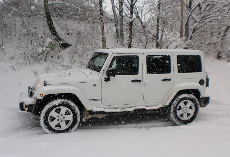 JK...MIMETICO SIBERIANO Atto 2...sempre più neve! Cimg9413