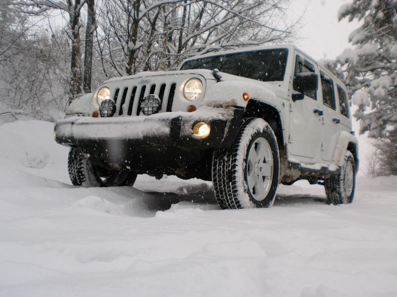 JK...MIMETICO SIBERIANO Atto 2...sempre più neve! Cimg9414