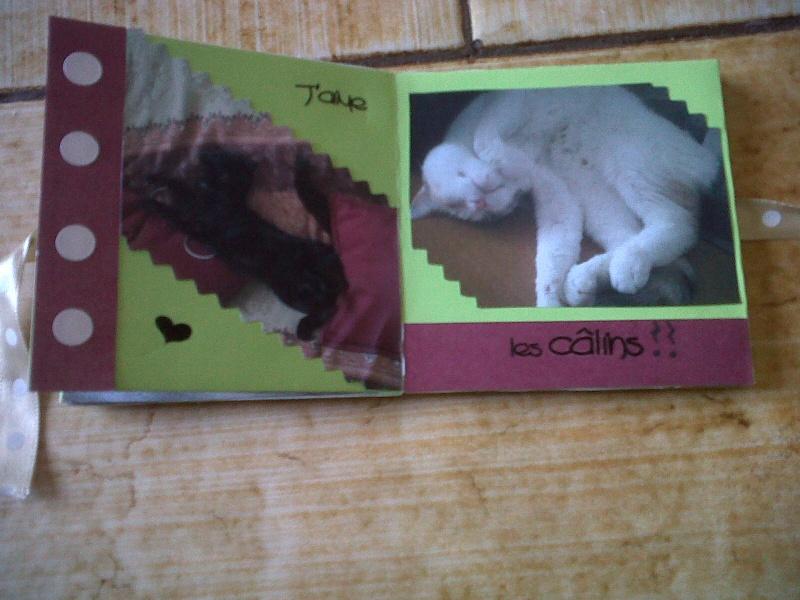 essai mini album Img-2032