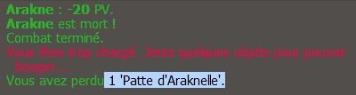 Invocation Arakne  Perte_10