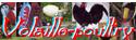 Le Poulailler des Grandes Races - Portail Vop10