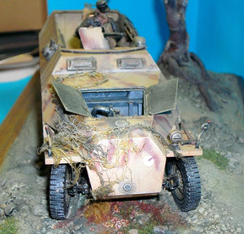 Sdkfz 251/D  Sdc10014