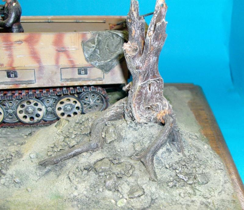 Sdkfz 251/D  Sdc10015