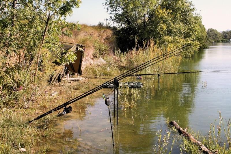 Pas de poissons mais que du bonheur 04710
