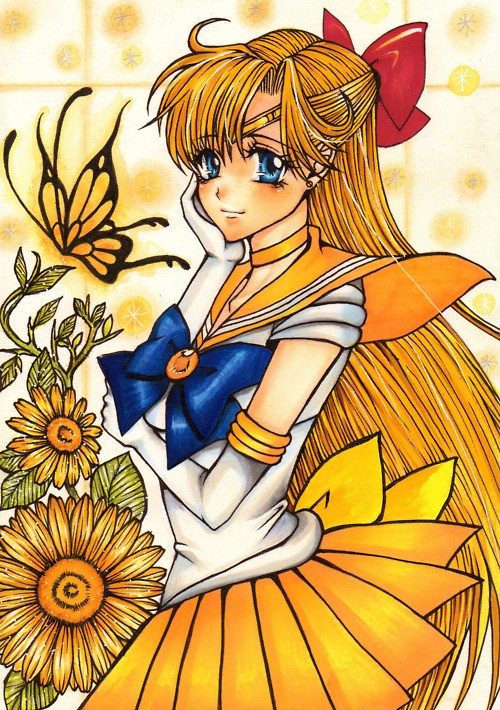 Sailor Venus/Minako Aino Gallery Tumblr10