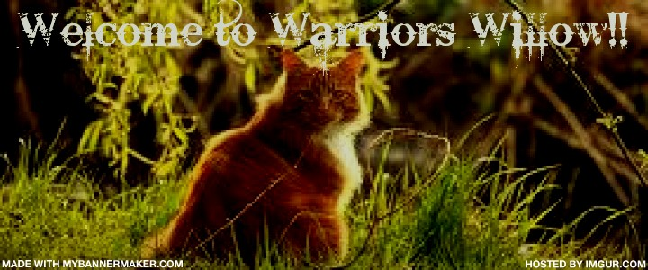 Warriors Willow!!!