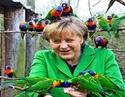 Membres du forum... - Page 18 Oiseau10