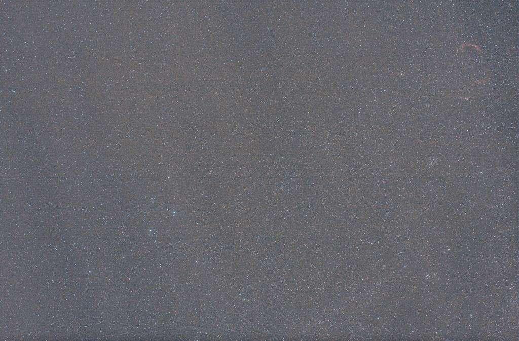 Dauphin, NGC6995 et comète Garrad Img_0811