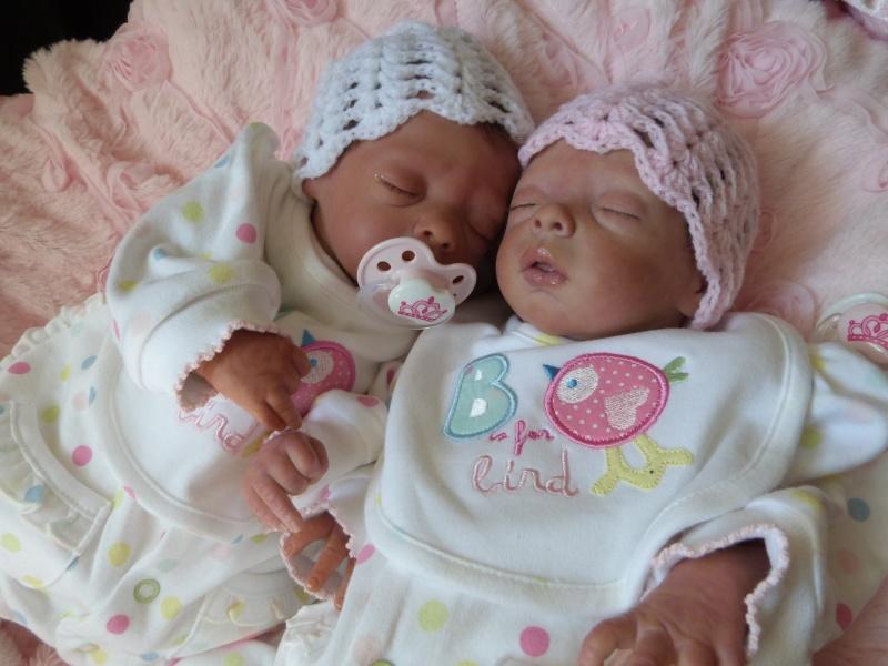 Jetzt  sind es Zwillinge P1010412