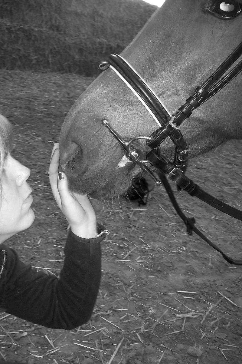 Les chevaux qui on fait partie de moi ! 100_2210