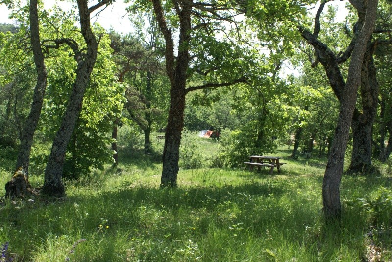 camping Huttopia Dieulefit Dsc02515