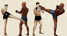 Os 10 Golpes Mais Finalizadores do MMA Low_ki10