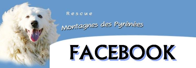 FACEBOOK Rescue13