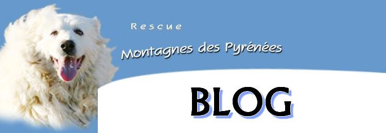 Le BLOG Rescue14