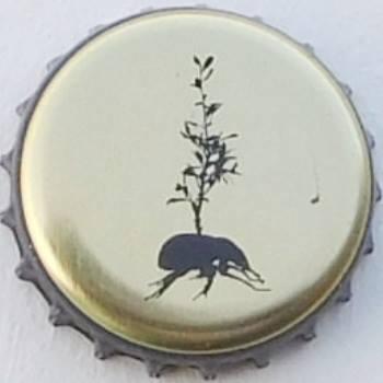 Beetles Beer brasserie De Brabandere Belgique Taupe10