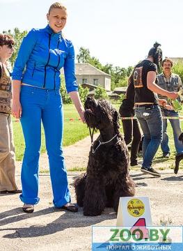 19 мая, Молодечно, Республиканская выставка собак всех пород Ddd_dd10