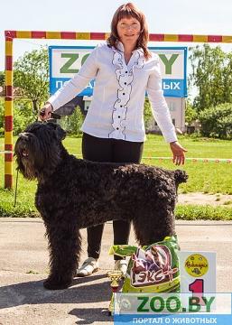 19 мая, Молодечно, Республиканская выставка собак всех пород Ddnnd_10