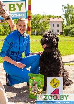 19 мая, Молодечно, Республиканская выставка собак всех пород Ndn_dd10