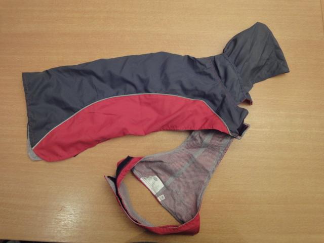 A vendre: plusieurs manteaux pour chien Dsc06716