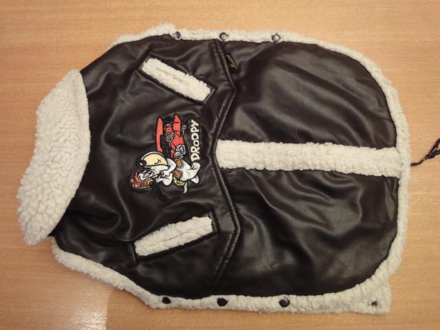 A vendre: plusieurs manteaux pour chien Dsc06721