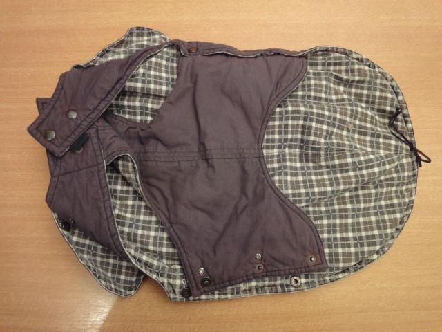 A vendre: plusieurs manteaux pour chien Dsc06724