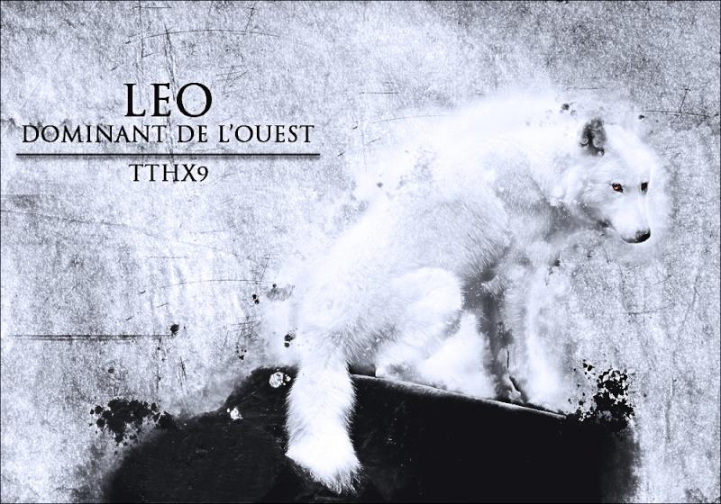 Les créations de Count' (Under.Construction) Leo110