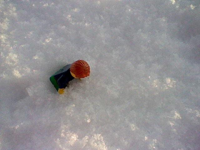 [L'hiver de la minifig] Les photos Hni_0093