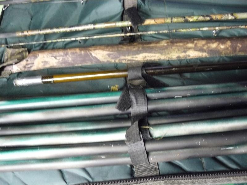 la chute des feuilles ,perturbant pour le poisson  P1200412