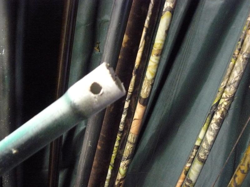 la chute des feuilles ,perturbant pour le poisson  P1200414