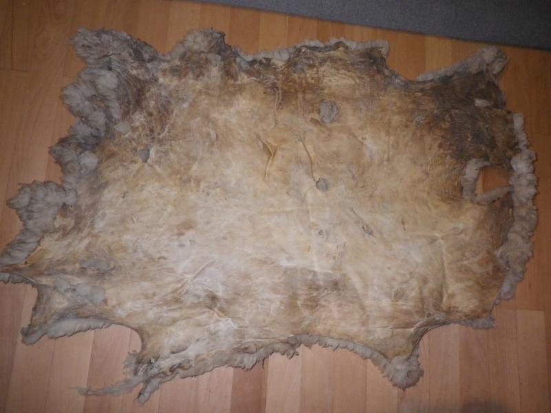 [tannage] demande de conseil pour peaux de sanglier, chevreuil ou lapin Imgp0811
