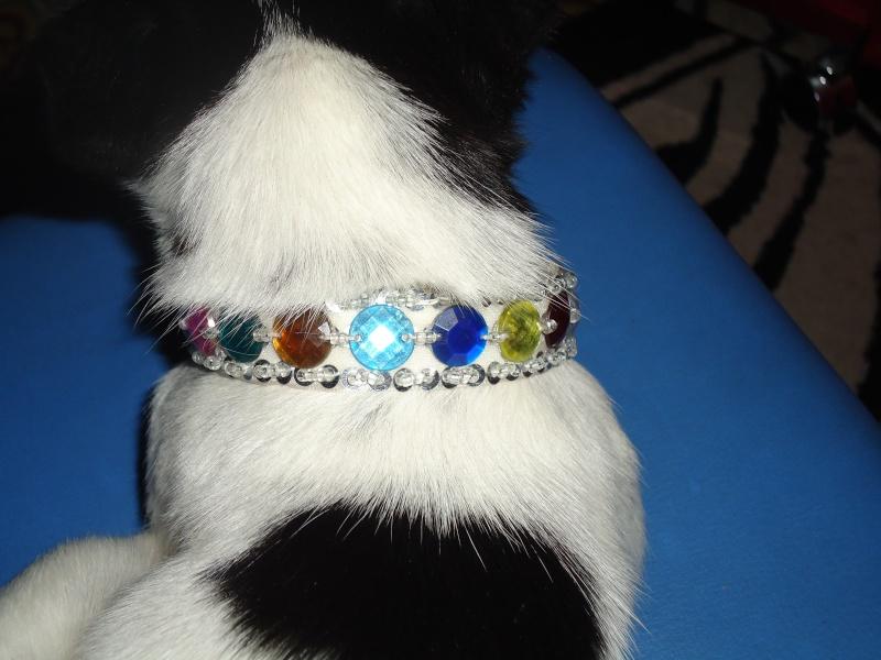 creation de colliers fantaisie pour Lola Dsc00612