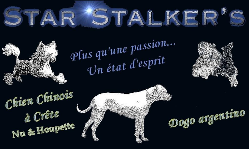 Star Stalker's Forum