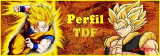 Perfil TDF