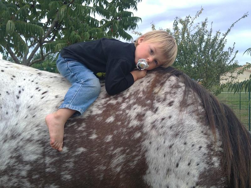 NOUVEAU CONCOURS PHOTO : la sieste à cheval ! - Page 2 11092011