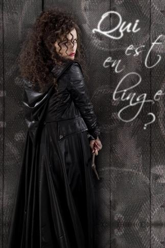 Déco Bellatrix Lestrange.  Hhhhh10