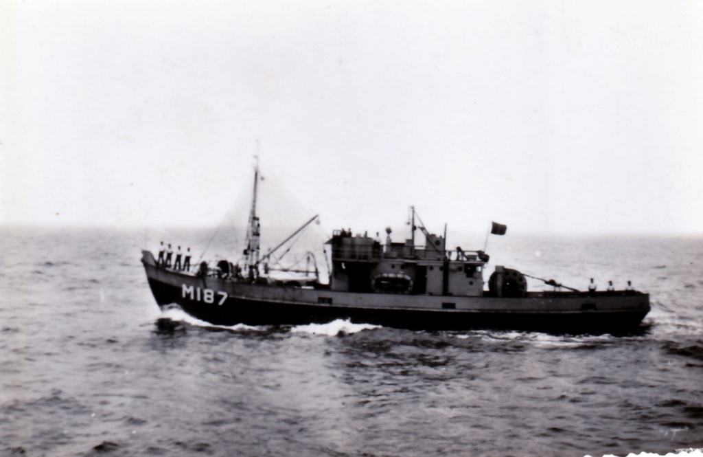 Marine Belge  1_mms110