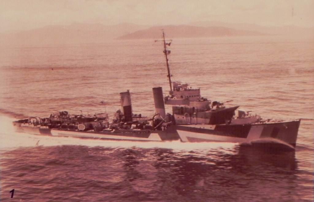Marine brésilienne 2_mari10