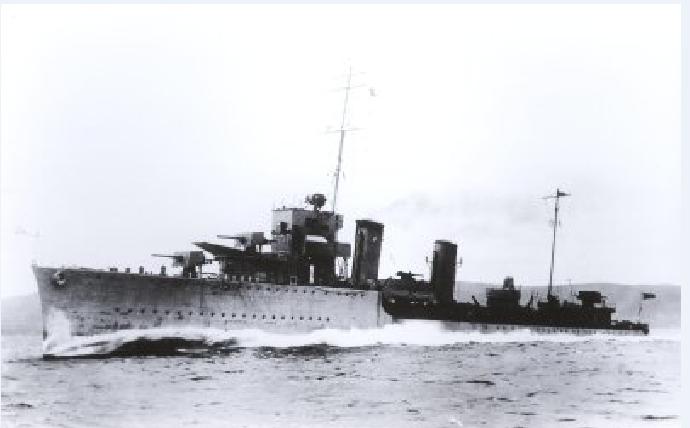 Marine chilienne 2_orel10
