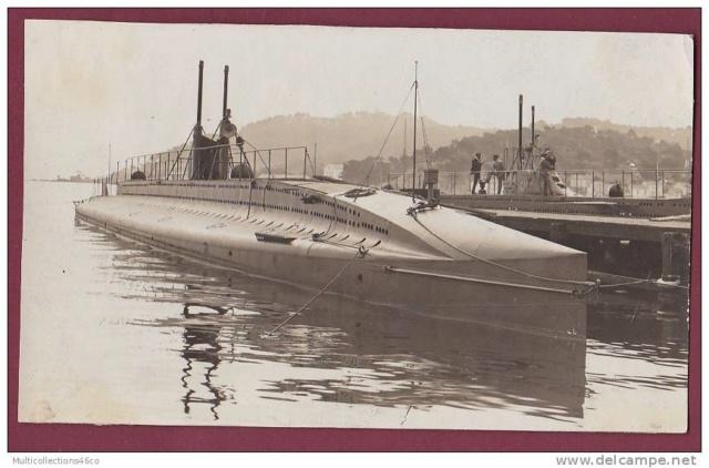 Marine du Perou  5_pala10