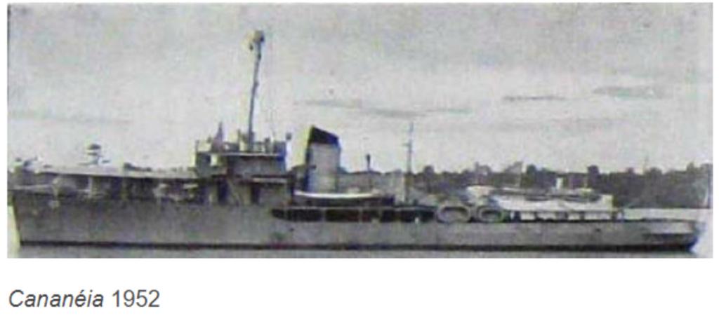 Marine brésilienne - Page 2 C2_can11