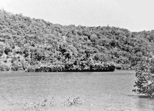 La Marine néerlandaise sauf cuirassés,croiseurs,destroyers  C_abra12